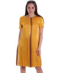 Oblečenie Ženy Krátke šaty Café Noir JA6260 žltá