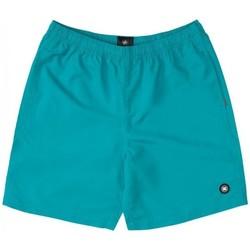 Oblečenie Chlapci Plavky  DC Shoes BAÑADOR PISCINA NIÑO DC EDBWS03069 Zelená