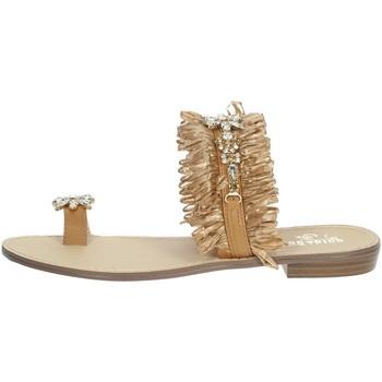 Topánky Ženy Žabky Gold & Gold GL613 Brown leather