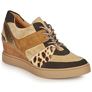 Topánky Ženy Nízke tenisky Mam'Zelle PERRY Béžová / Čierna / Leopard