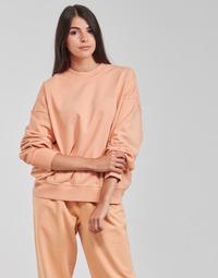 Oblečenie Ženy Mikiny Levi's WFH SWEATSHIRT Ružová