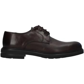 Topánky Muži Derbie Antony Sander 720 BROWN