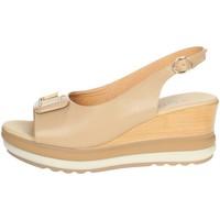 Topánky Ženy Sandále Repo 20428-E1 Beige