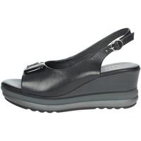 Topánky Ženy Sandále Repo 20428-E1 Black
