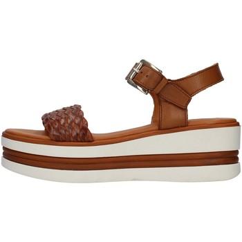 Topánky Ženy Sandále Pregunta PQ6605000 BROWN
