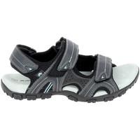 Topánky Muži Športové sandále Elementerre Akka Marine Modrá