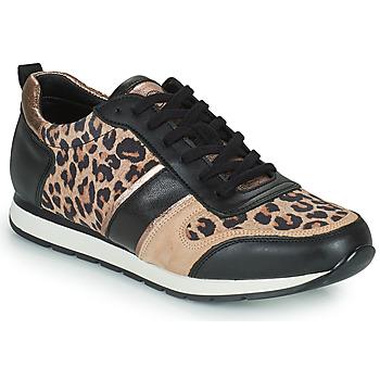 Topánky Ženy Nízke tenisky Betty London PARMINE Čierna