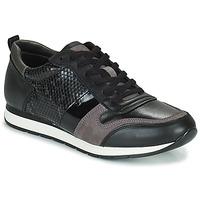 Topánky Ženy Nízke tenisky Betty London PERMINE Čierna