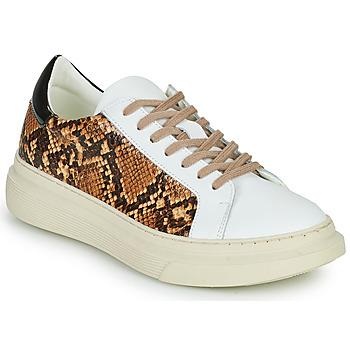 Topánky Ženy Nízke tenisky Betty London PAROLE Biela