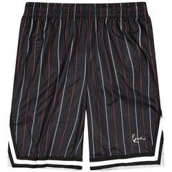 Oblečenie Muži Šortky a bermudy Karl Kani Short  Small Signature Pinstripe Mesh noir/bleu/rouge