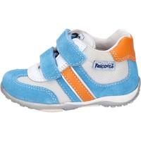 Topánky Chlapci Nízke tenisky Falcotto BH196 Modrá