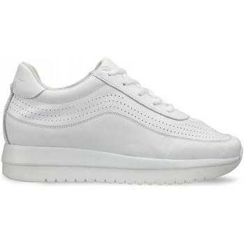 Topánky Ženy Nízke tenisky Docksteps DSW951000 Biely