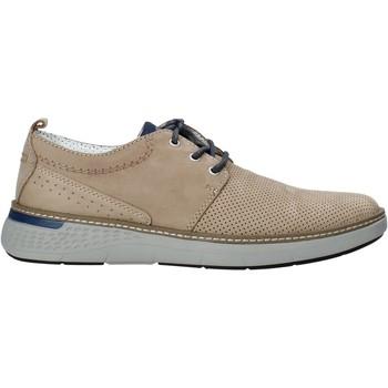 Topánky Muži Derbie Valleverde 17884 Béžová