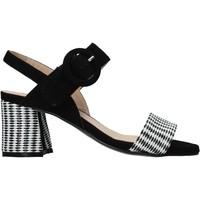 Topánky Ženy Sandále Carmens Padova 45107 čierna