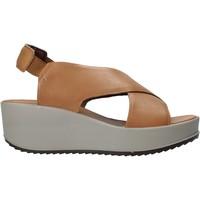 Topánky Ženy Sandále IgI&CO 7164122 Hnedá
