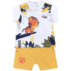 Oblečenie Deti Komplety a súpravy Chicco 09076633000000 žltá