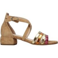 Topánky Ženy Sandále Carmens Padova 45060 Hnedá