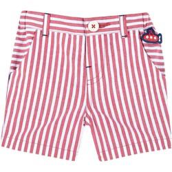 Oblečenie Deti Šortky a bermudy Chicco 09052936000000 Červená
