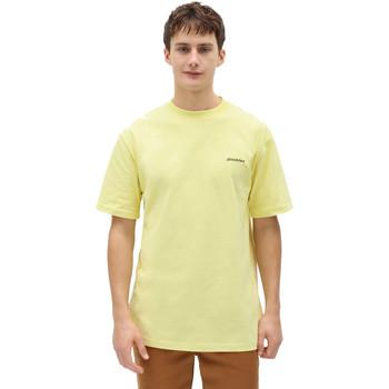 Oblečenie Muži Tričká s krátkym rukávom Dickies DK0A4X9OB541 žltá