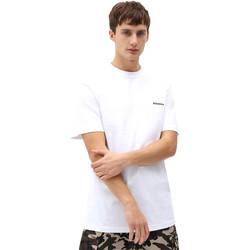 Oblečenie Muži Tričká s krátkym rukávom Dickies DK0A4X9OWHX1 Biely