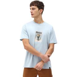 Oblečenie Muži Tričká s krátkym rukávom Dickies DK0A4X9IB551 Modrá