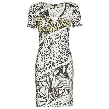 Oblečenie Ženy Krátke šaty Desigual WILD Viacfarebná
