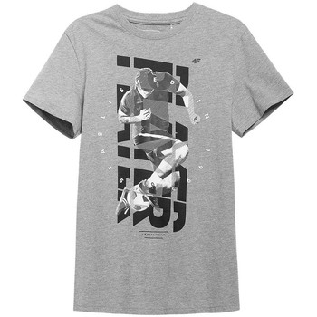 Oblečenie Muži Tričká s krátkym rukávom 4F TSM011 Sivá
