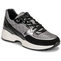 Topánky Ženy Nízke tenisky Fericelli PIRYNA Čierna