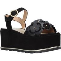 Topánky Ženy Sandále Docksteps DSE104973 čierna