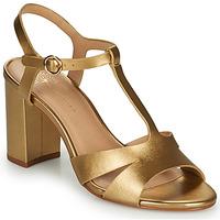 Topánky Ženy Sandále Cosmo Paris ZOUM Zlatá