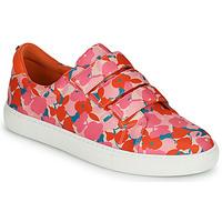 Topánky Ženy Nízke tenisky Cosmo Paris HAJIA Ružová / Kvetovaná