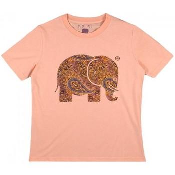Oblečenie Ženy Košele a blúzky Trendsplant CAMISETA MUJER  029970WPTP Oranžová