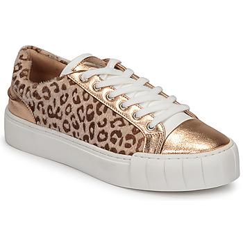 Topánky Ženy Nízke tenisky Vanessa Wu LEVANTER Leopard