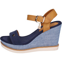 Topánky Ženy Sandále Enrico Coveri  Modrá