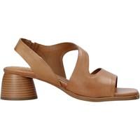 Topánky Ženy Sandále Café Noir XM1010 Hnedá