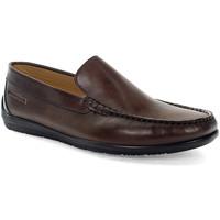 Topánky Muži Mokasíny Lumberjack SM40602 003EU B01 Hnedá