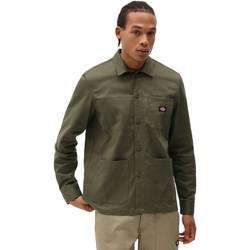 Oblečenie Muži Košele s dlhým rukávom Dickies DK0A4XEIMGR1 Zelená