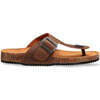 Topánky Muži Sandále Docksteps DSM228401 Hnedá