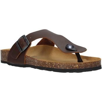 Topánky Ženy Žabky Docksteps DSW229001 Hnedá