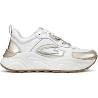 Topánky Ženy Nízke tenisky Alberto Guardiani AGW001309 Biely
