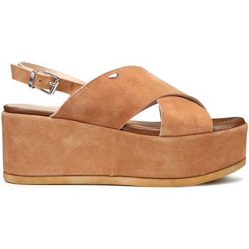 Topánky Ženy Sandále Alberto Guardiani AGW003001 Hnedá