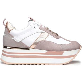 Topánky Ženy Nízke tenisky Alberto Guardiani AGW004302 Biely