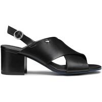 Topánky Ženy Sandále Alberto Guardiani AGW003405 čierna