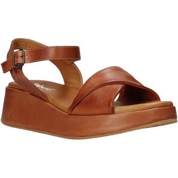 Topánky Ženy Sandále Sshady L2402 Hnedá