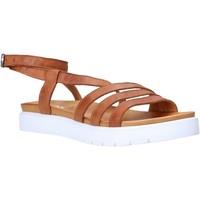 Topánky Ženy Sandále Sshady MRT339 Hnedá