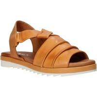 Topánky Ženy Sandále Sshady L1401 Hnedá
