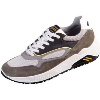 Topánky Muži Nízke tenisky IgI&CO Set UP Biela, Čierna, Sivá
