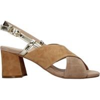 Topánky Ženy Sandále Carmens Padova 45310 Hnedá