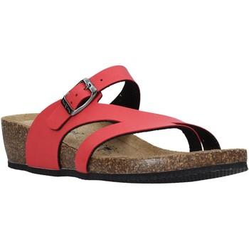 Topánky Ženy Žabky Valleverde G5306 Červená