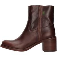 Topánky Ženy Čižmičky Dakota Boots C12 BROWN